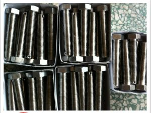Inconel X750 Hex bolt