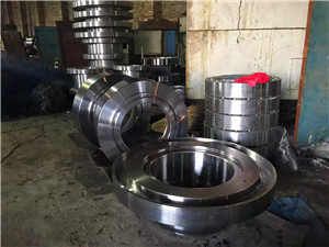 ASTM A182 F317 forgings rings discs parts